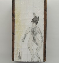 Oil and pencil on wood installations | The nature of finding series |  2012-13