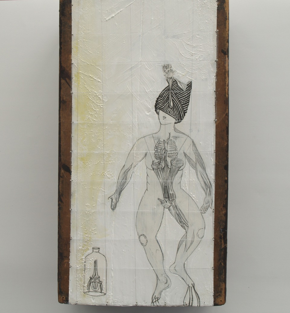 2011Contractile roots.15x25cm.Mixed media on wood