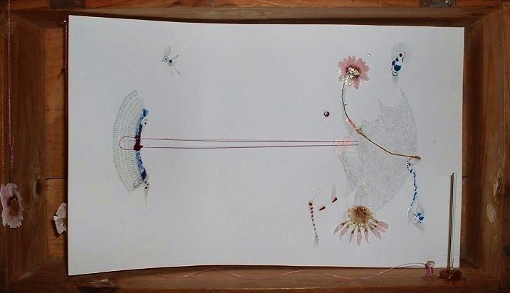The distance | Nail polish , flower and pencil inside box | 45x30cm | 2006